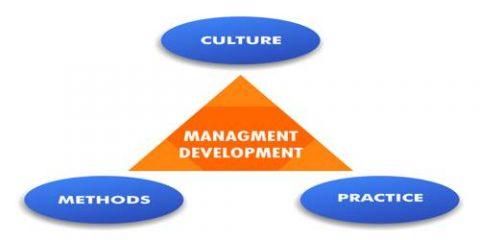 training development management