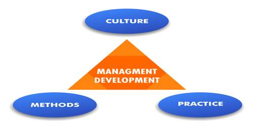 TRAINING DEVELOPMENT MANAGEMENT